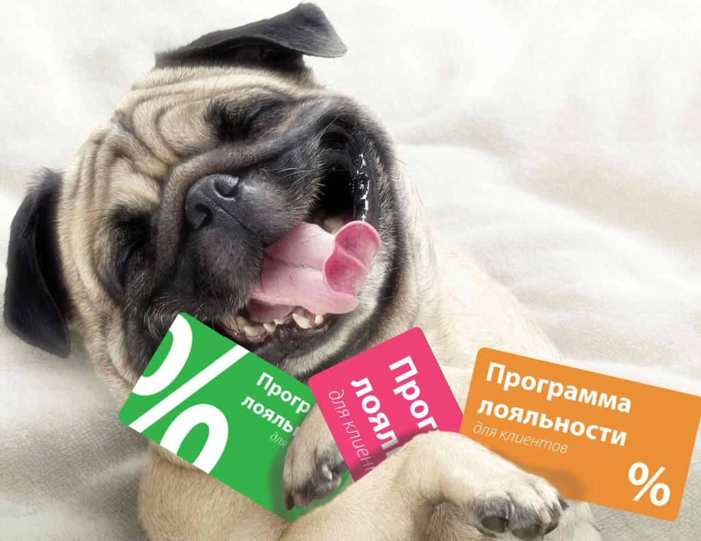 funny_dog_loyalty